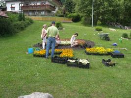 Bepflanzung