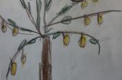 Ein Bild im der Ausstellung  der Jahreszeiten, zu sehen ist ein selbstgemalter Apfelbaum
